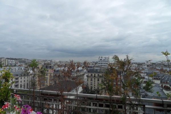 paris terrasse rooftop